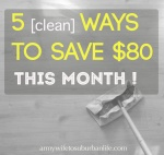 saving money on cleaning supplies