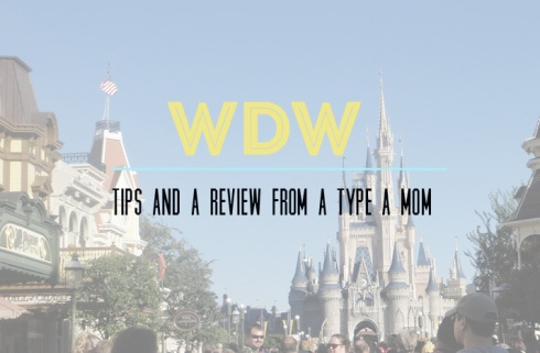 disney guide and tips